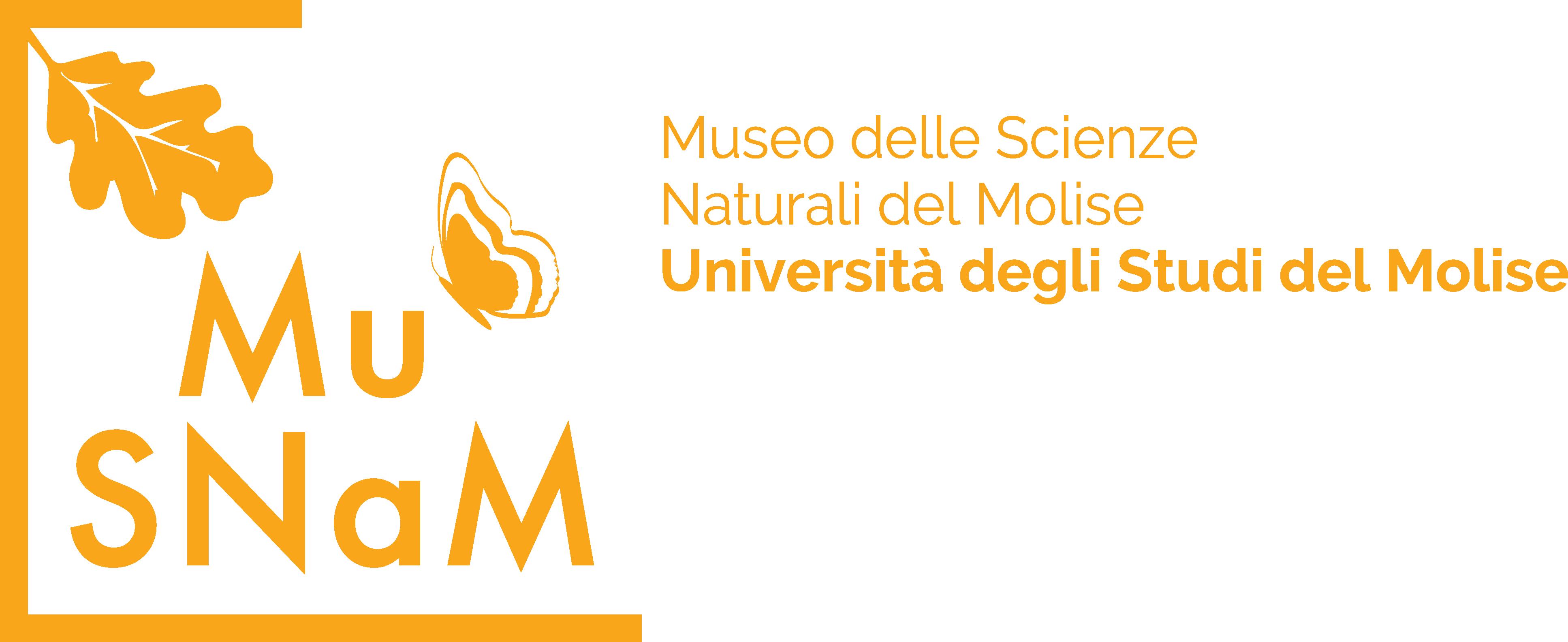 MuSNaM - Museo delle Scienze Naturali del Molise